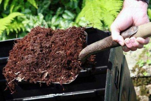 ботва на компост