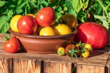 вкус томатов