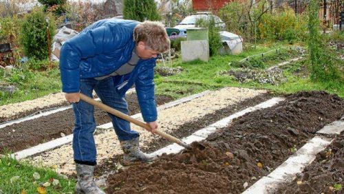 Работы в огороде