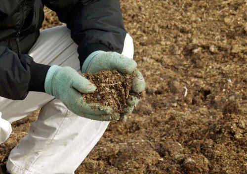 удобряем почву в октябре