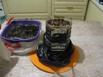 Вермичай из биогумуса