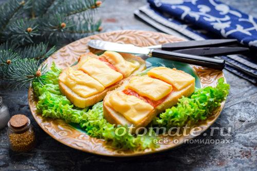 горячие бутерброды с сыром помидорами и домашним майонезом