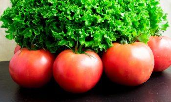 старые сорта томатов
