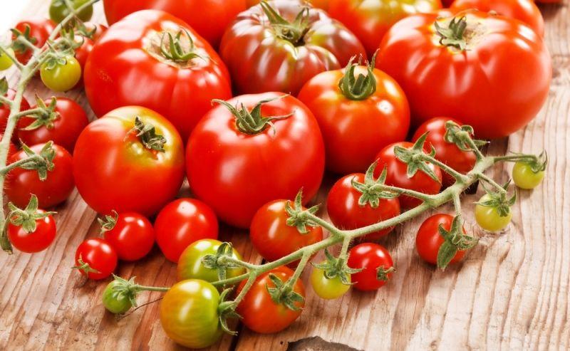 Почему помидоры в теплице не сладкие