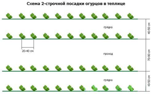 dvustrochnaya-posadka