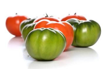 Зеленые и красные помидоры