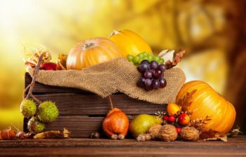 Благоприятные дни по лунному календарю для работ в саду и огороде в октябре