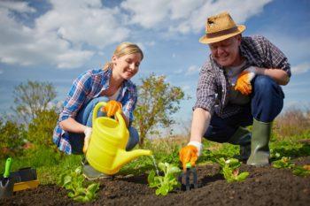 Посевной календарь на 2020 год для средней полосы России: благоприятные дни для посадок и работы в саду