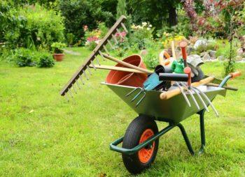 Календарь садовода и посадочные дни для Западной Сибири