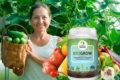Миниатюра к статье BioGrow, биоактиватор роста растений: инструкция, отзывы