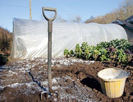 известкование почвы осенью